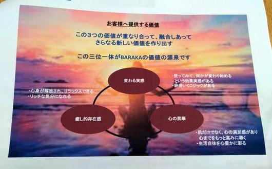 IMG60149_s.jpg